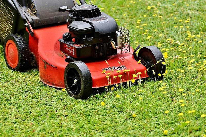 Košnja trave obavlja se popodne